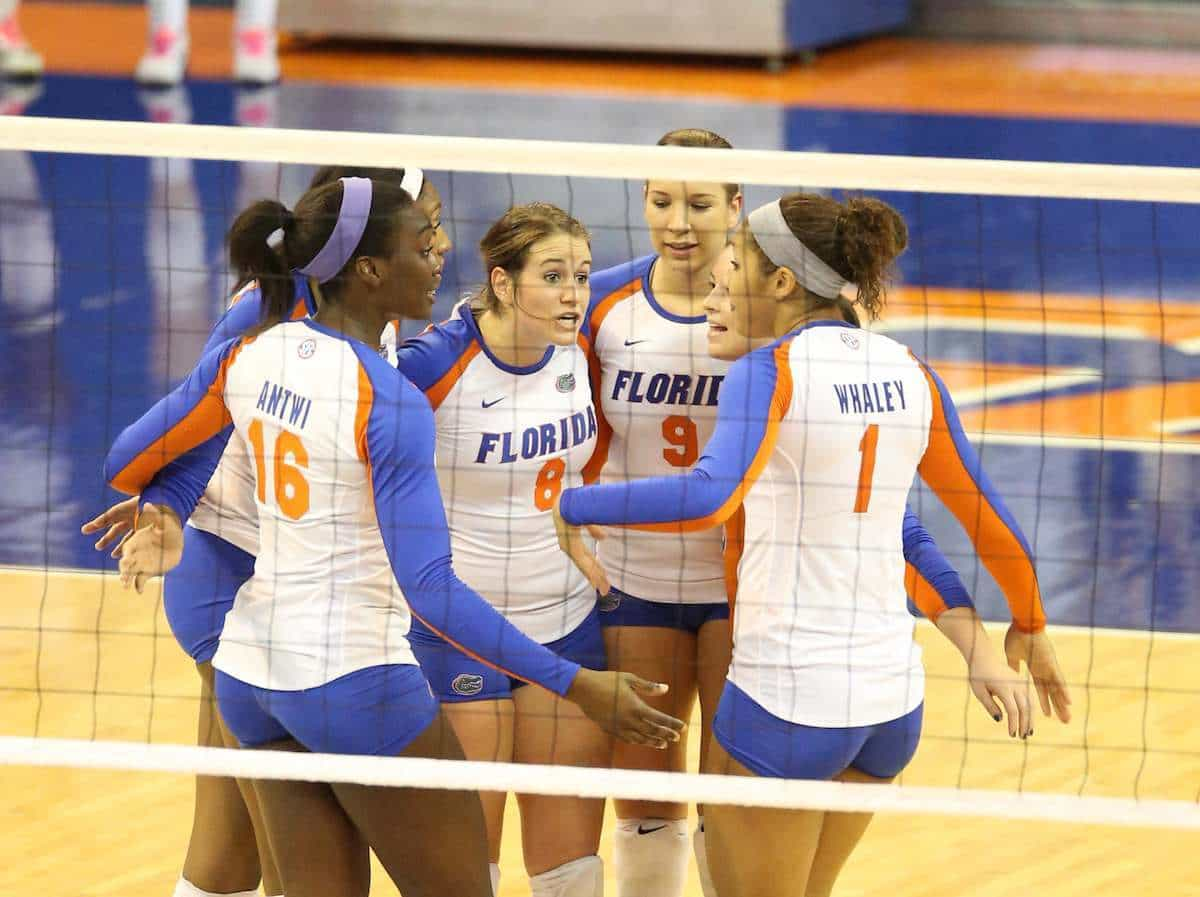 Florida Gators Volleyball Defeats Ole Miss Gatorcountry Com