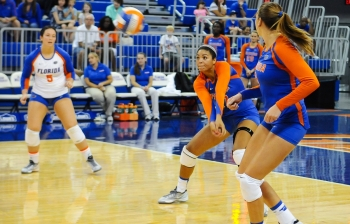 Gators knock off Stanford