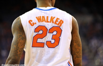 Florida Gators Basketball review and preview