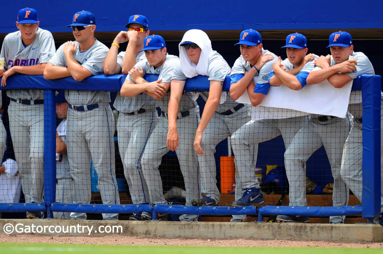 14-05-31_gators vs unc ncaa baseball regional_142_dxo