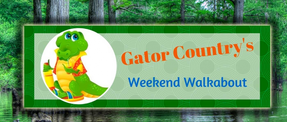 GC's Weekend Walkabout: Florida vs Eastern Michigan