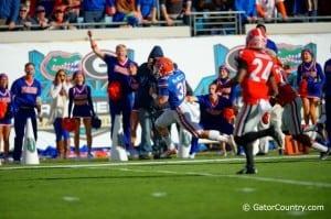 The Florida Gators behind 424 rushing yards upset the Georgia Bulldogs 38-20.  Florida Gators vs Georgia Bulldogs. November 1st, 2014. Gator Country photo by David Bowie.