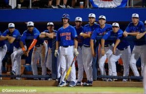 University of Florida Gator baseball players look on during a win over Florida State in the 2016 Gainesville Super Regional- Florida Gators baseball- 1280x852