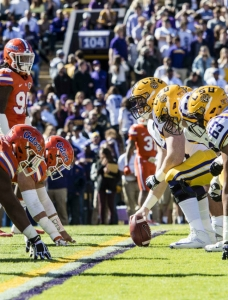 Florida Gators Defeat LSU Tigers 16 - 10